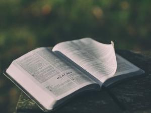 biblepublic